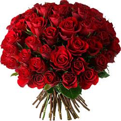 roses-rouges-envoyer-50-10571-250